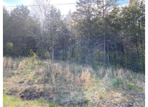 Block 6  Lot 22  Thunderbird Drive  7 Holiday Island, Ar
